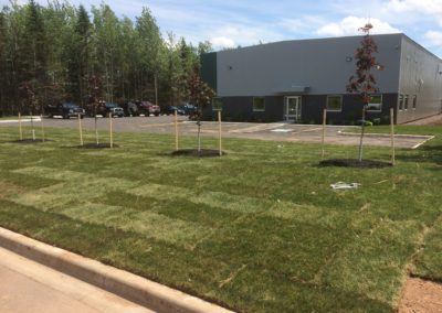 Commercial Landscaping NB (4)